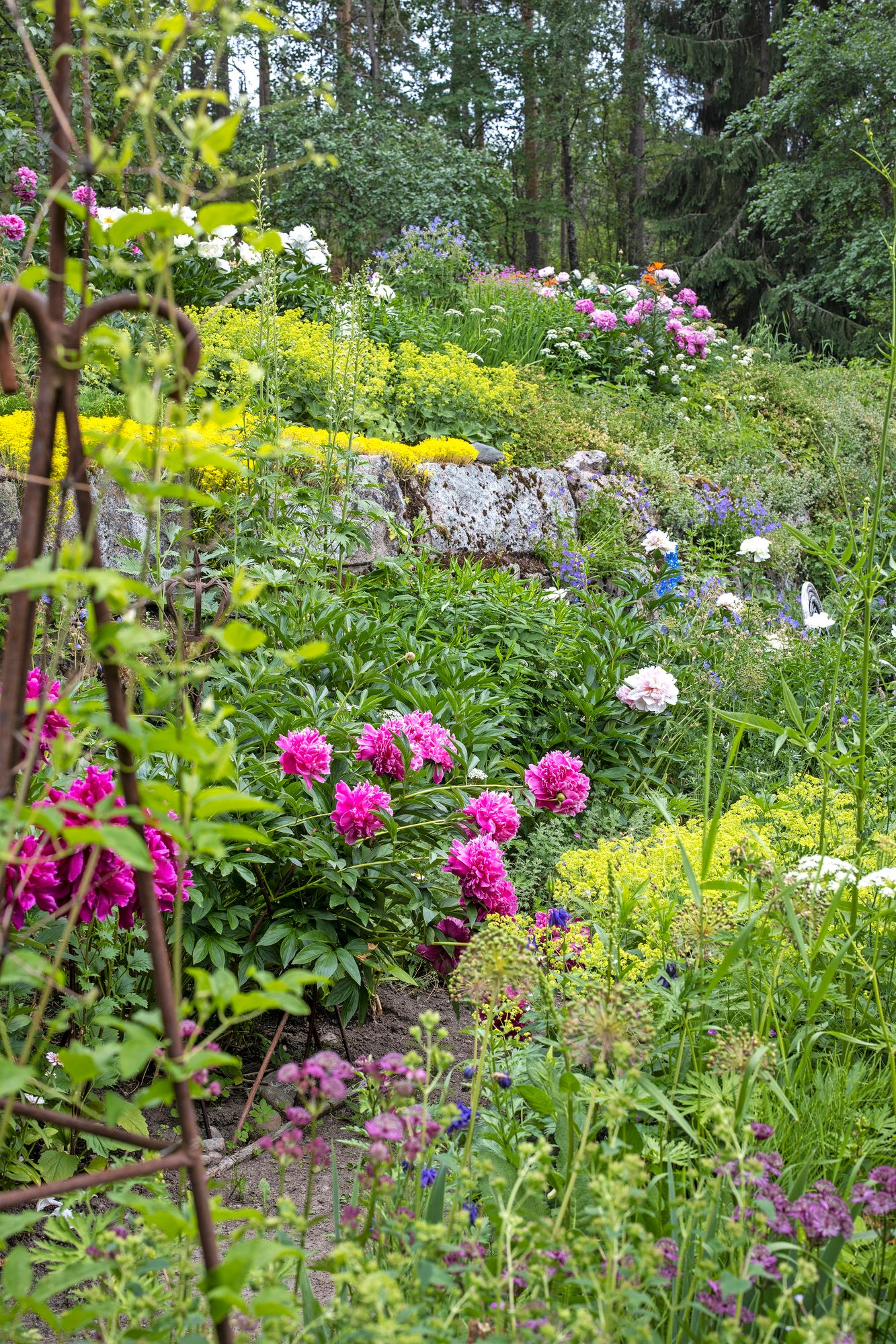 On the embanked slope, plant combinations stand out spectacularly.