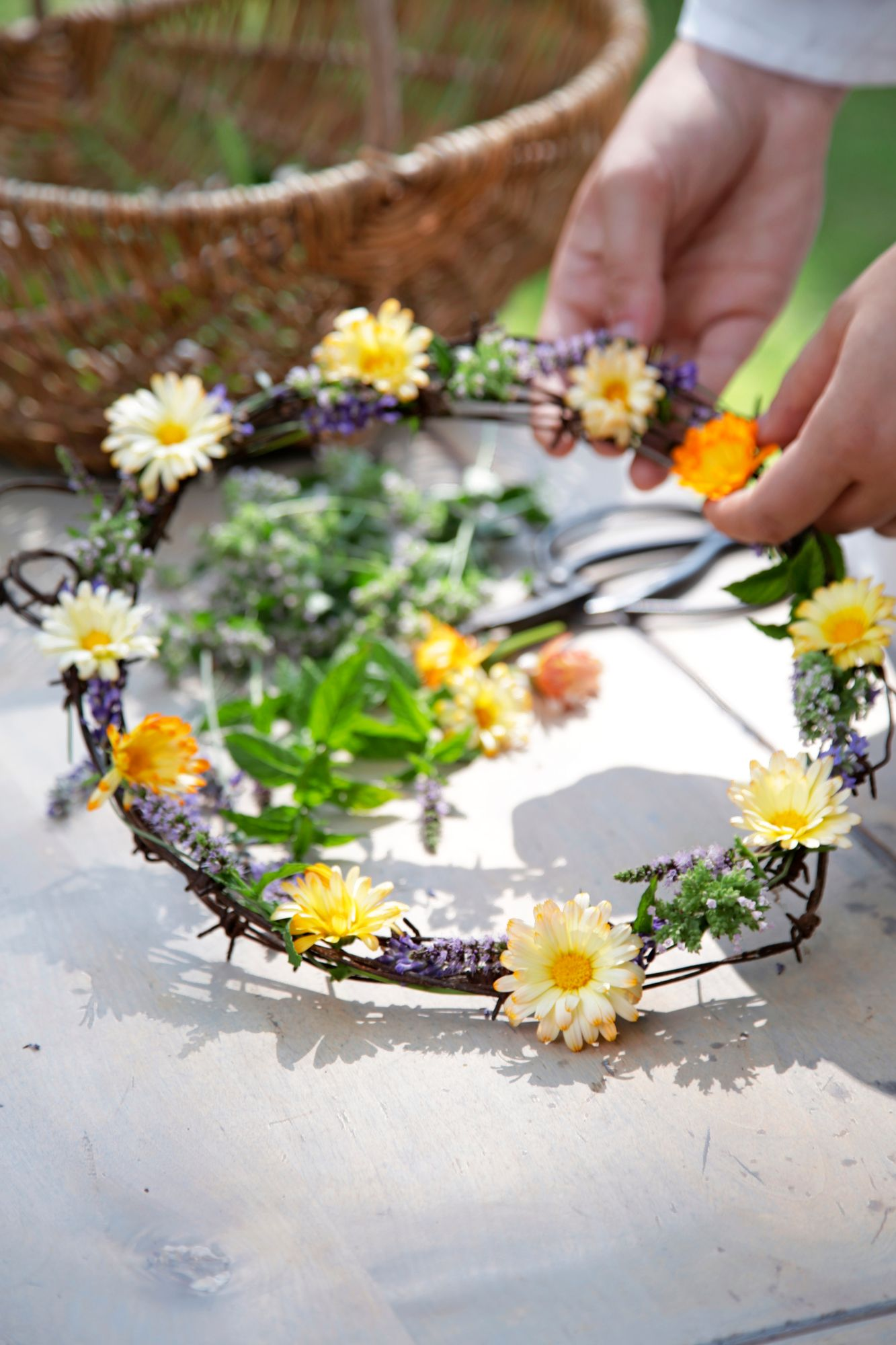 Collect annual summer flowers of sadness for home decoration and table settings.  It just inspires the plants to bloom more happily.